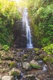 La cascade avec la roche dans le premier plan a tiré en portrait photos libres de droits