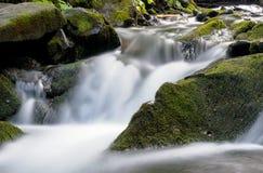 La cascade carpathienne Shypit Image libre de droits