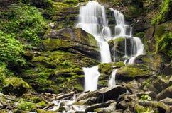 La cascade carpathienne Shypit Photos libres de droits
