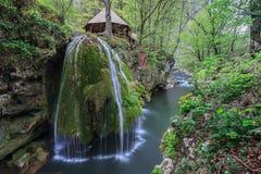 La cascade de Bigar tombe dans des gorges parc national, Roumanie de Beusnita photos stock