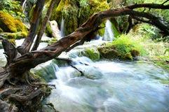 La cascade de la cascade à écriture ligne par ligne Photos stock