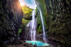 La cascade de Madakaripura est la cascade la plus grande dans Java Photos libres de droits
