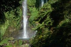 La cascade de Sekumpul dans Bali a entouré par la forêt tropicale photographie stock