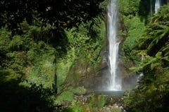 La cascade de Sekumpul dans Bali a entouré par la forêt tropicale photo libre de droits