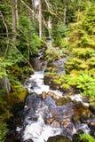 La cascade de Triberg en Allemagne, forêt noire Image stock