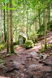 La cascade de Triberg en Allemagne, forêt noire Images stock