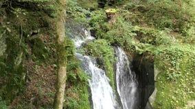 La cascade de visite meurent Rausch au courant sauvage d'Endert à côté de Cochem, rivière Allemagne de la Moselle banque de vidéos