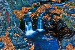 La cascade et les feuilles tombées photographie stock libre de droits