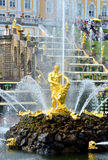 La cascade, le palais et le Samson Fountain grands dans Peterhof, Photos stock