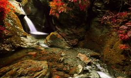 La cascade rouge Image libre de droits