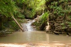 La cascade sont sur la rivière de montagne du Caucase occidental, Rus Photographie stock