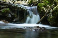 La cascade tombe au-dessus des roches moussues Photographie stock libre de droits