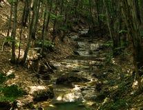 La cascade tombe au-dessus des roches moussues Image stock