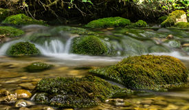 La cascade tombe au-dessus des roches moussues Images libres de droits