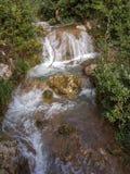 La cascade cascade vers le bas le côté de montagne au-dessus de la mousse a couvert des roches parmi les arbres et les buissons images libres de droits