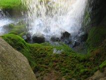 La cascata Immagine Stock Libera da Diritti