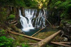 La cascata alla diga nella gola di Vintgar vicino ha sanguinato, la Slovenia Immagini Stock