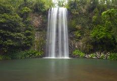 La cascata australiana Millaa Millaa cade, il Queensland del nord, Aust Fotografia Stock Libera da Diritti