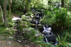 La cascata che scorre giù il muschio ha coperto le rocce Fotografia Stock Libera da Diritti