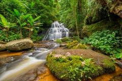 La cascata di Mun-Dang con il fiore di antirrino Fotografie Stock