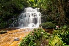 La cascata di Mun-Dang con il fiore di antirrino Fotografia Stock