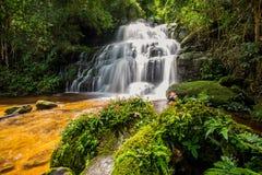La cascata di Mun-Dang con il fiore di antirrino che fioriscono soltanto sopra Immagine Stock