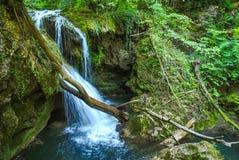 La cascata di Vaioaga Immagini Stock