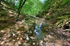 La cascata grigia della coda della cavalla Fotografia Stock Libera da Diritti