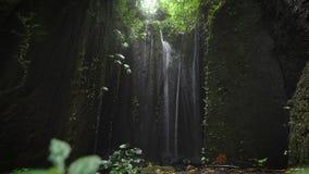 La cascata misteriosa, situata in un posto nascosto degli occhi, si è accesa da luce solare da sopra Caduta della cascata dei get stock footage