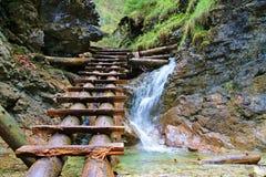 La cascata nel paradiso slovacco Immagine Stock