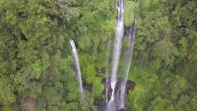 La cascata nella giungla selvaggia, l'acqua cade con un arresto, il posto perfetto per ammirare la fauna selvatica video d archivio