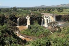 La cascata Tisissat di Nilo in Etiopia fotografie stock libere da diritti