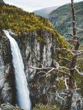 La cascata Vettisfossen è il più alta caduta libera nel paesaggio della Norvegia Immagine Stock Libera da Diritti
