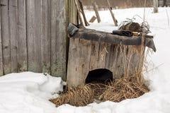 La caseta de perro de madera vieja está sobre un granero en el pueblo Imagen de archivo libre de regalías