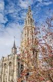 La catedral de Amberes, Bélgica Fotografía de archivo