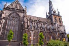 La catedral de St. Louis Foto de archivo libre de regalías