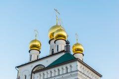 La catedral del icono de Theodore de la madre de dios Imagen de archivo libre de regalías