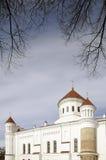 La catedral del Theotokos en Vilnius imagen de archivo libre de regalías