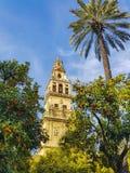 La catedral española en Córdoba rodeó con las palmeras Imagen de archivo