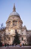 La catedral y el árbol de navidad de Paul Imagenes de archivo