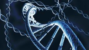 La catena genetica del DNA incaglia la rappresentazione 3D fotografia stock libera da diritti