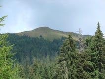 La catena montuosa del Marmaros dei Carpathians ucraini vicino alla città di Rakhiv della regione Transcarpathian l'ucraina 08 Immagine Stock