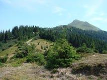 La catena montuosa del Marmaros dei Carpathians ucraini vicino alla città di Rakhiv della regione Transcarpathian l'ucraina 08 Immagini Stock