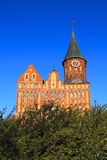 La cathédrale de Konigsberg sur l'île Kneiphof Image stock