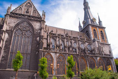 La cathédrale de St Louis Photo libre de droits