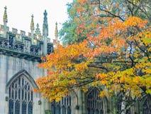 La cathédrale et l'église collégiale, Manchester, Angleterre photographie stock libre de droits