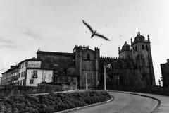 La cathédrale Sé font Porto Image libre de droits
