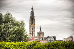 La cattedrale di Anversa, Belgio Fotografia Stock