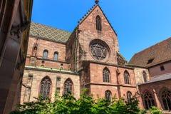 La cattedrale di Basilea, svizzero Fotografia Stock Libera da Diritti