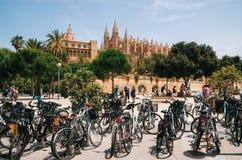 La cattedrale di Santa Maria di Palma e di La Almudaina Royal Palace Immagine Stock
